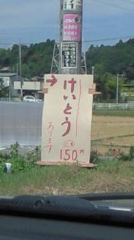 NEC_2105.JPG